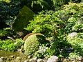Vue sur le jardin Albert Kahn.JPG