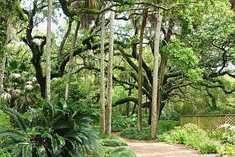 Washington Oaks Gardens State Park - Image: Washington Oaks State Gardens 2