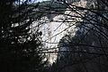 Wasserofen Wasserfall durch Gebüsch.jpg