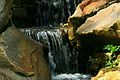 Waterfall At The Rock Garden RHS Wisley Surrey UK.jpg