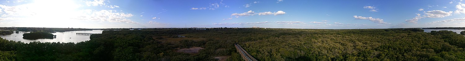 View from Weedon Island Preserve observation tower.