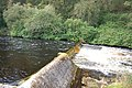 Weir on the River Doon - geograph.org.uk - 1498786.jpg