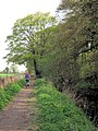 Wendover Arm, Cycling along the towpath - geograph.org.uk - 1265470.jpg