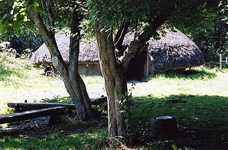 Peat Moors Centre - Image: Westhay