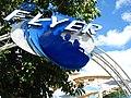 Wet n Wild Orlando - The Flyer 1.jpg