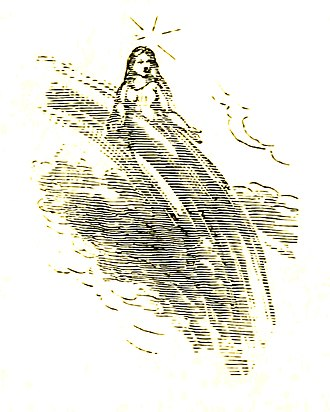 Fairy - 1896 illustration of a fairy from Ernest Vincent Wright's The Wonderful Fairies of the Sun