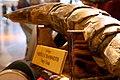 Woolly mammoth tusk (509119136).jpg