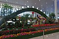 Year of the Dog flower bed at Kunming South Railway Station (20180215083703).jpg