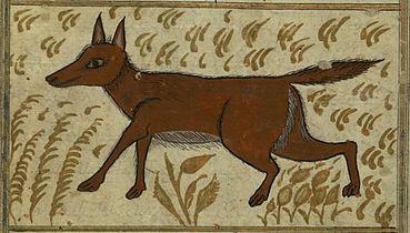 Zakariya ibn Muhammad Qazwini - A Wolf.jpg