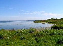 Zatoka Pucka - wybrzeże Zatoki Puckiej we Władysławowie - tzw. Słone Łąki - widok w kierunku południowym - Nadmorski Park Krajobrazowy.jpg