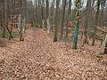Zauberwald Waldweg Kunst Allee - panoramio.jpg