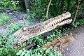"""Крокодил"" Голосеевский лес.jpg"