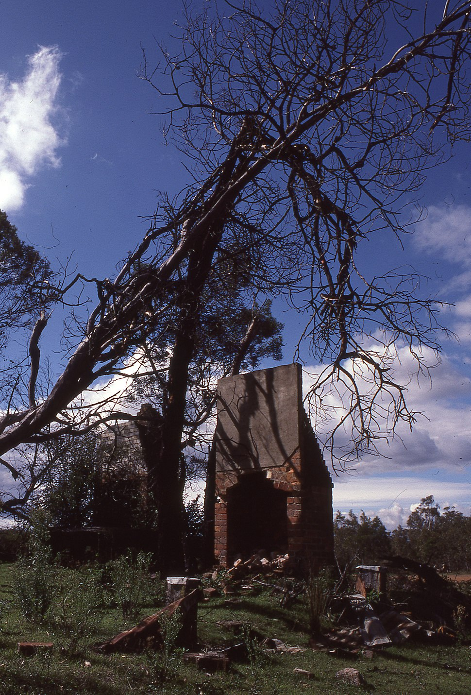 (1)Ruins at Yerranderie