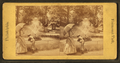 (Golden Fish) Fountain, from Robert N. Dennis collection of stereoscopic views.png
