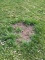 Čarodějné kruhy v Lublaňské (005).jpg