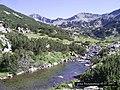 Бъндеришка река,Banderica river - panoramio (1).jpg