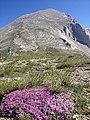 Вихрен - чудото от мрамор -IMG 5891.jpg