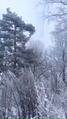 Волшебство холода 13.png