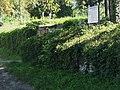 Голозубинецький парк, Голозубинці.jpg