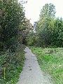Дорога вдоль левого берега реки Оккервиль в сторону Зольной улицы.jpg