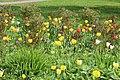 Елагин парк, фестиваль тюльпанов78.jpg
