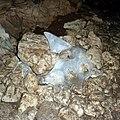 Лёд в Махневских пещерах - panoramio.jpg