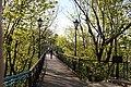 Міст пішохідний IMG 5470.jpg