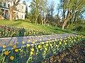 Одеса, Ботанічний сад, Французький бульвар 04-2018 13.jpg