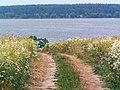 Озернинское водохранилище - panoramio.jpg