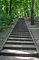 Парк Березовий гай по вулиці Вишгородській у Києві. Фото 4.jpg