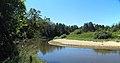Река Илеть 03.jpg