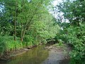 Річка Липовець.jpg