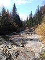 Річка Прутець Чемигівський 2. IMG.jpg