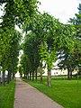 Таврический дворец, сад01.jpg