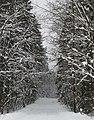 Фото путешествия по Беларуси 471.jpg