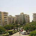 احياء الاسكندرية.jpg