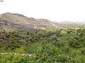 زربه - panoramio - Abdu Qaid (3).jpg