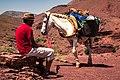ⵉⴷⵓⵔⴰⵔⵏⵓⴰⵟⵍⴰⵙ, Morocco (46326547782).jpg