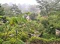千年瑶寨南岗排20151004 - panoramio (14).jpg