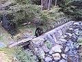 水車 - panoramio (1).jpg
