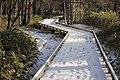 湯の湖周回 - panoramio.jpg
