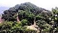 虎门皇帝山20130519 - panoramio (7).jpg