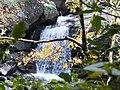 蚋仔溪 Ruizi Creek - panoramio (4).jpg