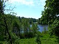 0019. Pargolovo. Finnish lake.jpg