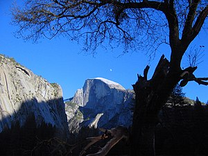 View on the Half Dome from the center of the Y...