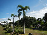 02397jfHour Great Rescue Concentration Camps Cabanatuan Park Memorialfvf 08.JPG