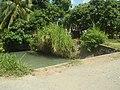0296Views of Sipat irrigation canals 24.jpg