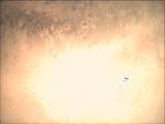 09-357.18.48 VMC Img No 17 (8268407971).png