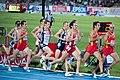 1500 m men final Barcelona 2010.jpg
