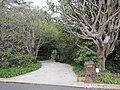 1550 San Remo Drive Pacific Palisades.JPG